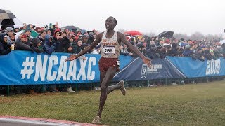 The Ultimate 2019 DI NCAA XC Championship Highlight
