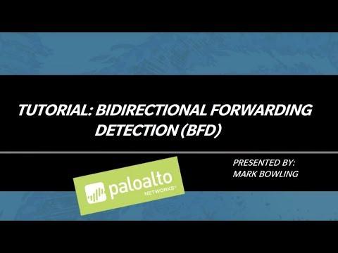 Tutorial Video: Bidirectional Forwarding Detection