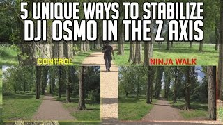 5 Unique Ways to Stabilize DJI Osmo Footage in the Z - Axis