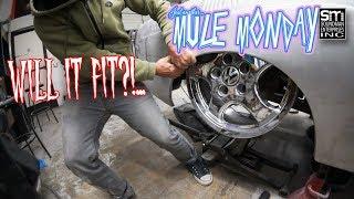 Mule body work part 2 - Mule Monday episode 5