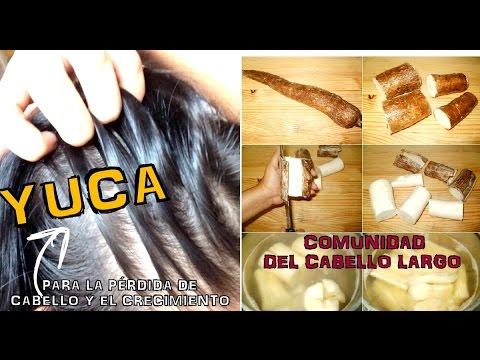 CRECE TU CABELLO CON YUCA (Mandioca) y sus...