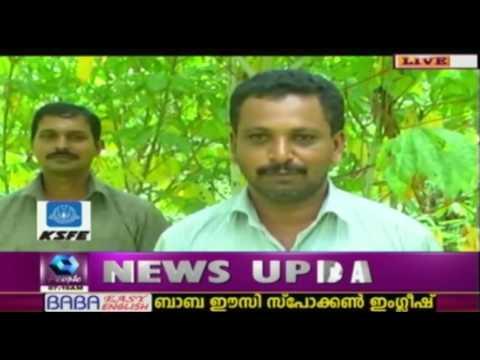 Left Job From Gulf; Returns To Kerala & Creates Farming Success Story