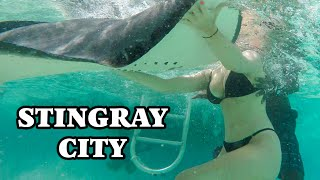 STINGRAY CITY  Cayman Islands 4K grand cayman snorkeling
