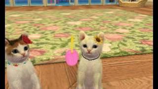 Video de imagenes de Nintendogs+Cats