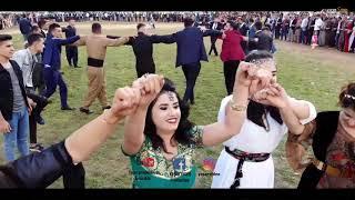 #silopi Goyan Aşireti #aşiret Düğünü #yaşar Prodüksiyon #zana & Berxudan Muh