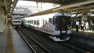 JR東日本  E257系0番台 M-104編成 9両編成  特急 かいじ116号 新宿行  八王子駅 2番線を発車