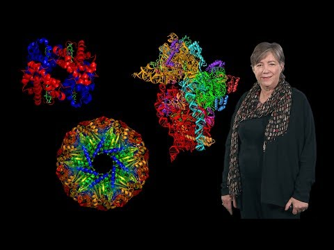 Susan Lindquist (Whitehead Institute, MIT, HHMI): Protein Folding and Disease