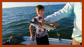 CATCHING SHARKS IN THE GULF OF MEXICO