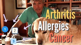 Allergies, Arthritis and Cancer in Pets: 3 Top Natural Remedies