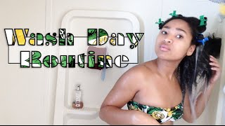 Wash Day Routine | Natural Hair (3c, 4a, 4b)