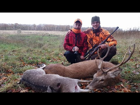 erfolgreiche Abstauberjagd - Hunter Brothers
