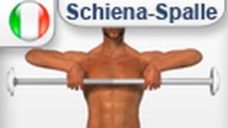 esercizio rematore bilanciere - collo trapezio spalle