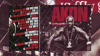 [49.89 MB] Akon - In my ghetto Full Album