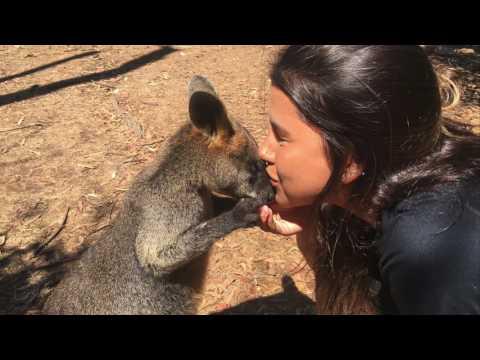 Internship in Australia - HR Testimonial - Paula's Experience