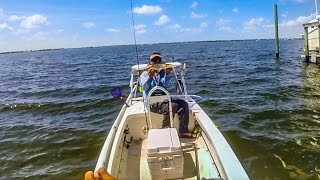 Stuart FL - Live Bait Fishing for Mangrove Snappers and Snooks - HD # 64