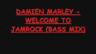 DAMIEN MARLEY WELCOME TO JAMROCK INSTRUMENTAL BASS