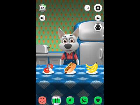 My Talking Dog - Level 12 | Meu Cachorro Falante Virtual