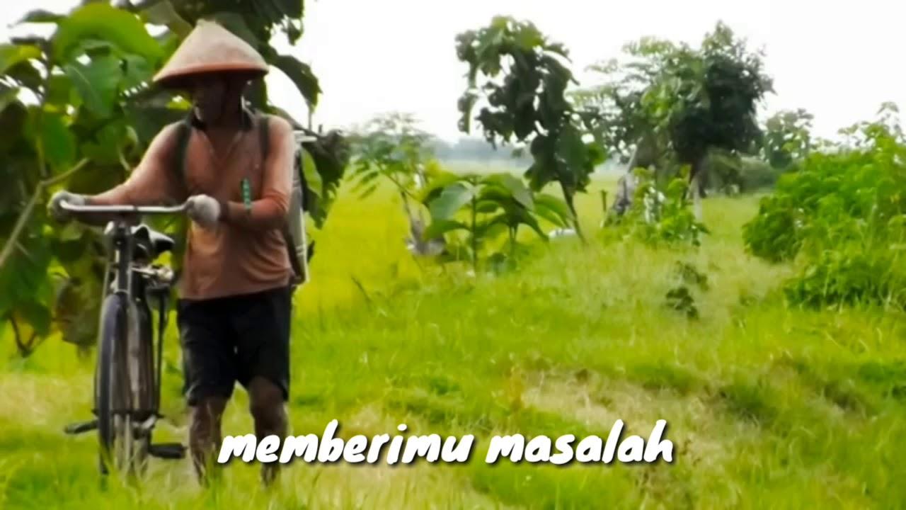 Video Kata kata motivasi kehidupan sang petani - YouTube