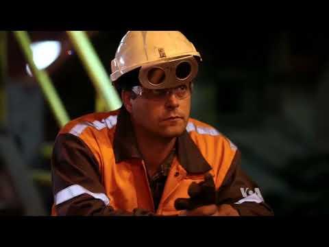 Economists Warn of Escalating Trade War Following US Steel Tariffs