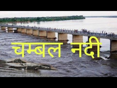 CHAMBAL RIVER # chambal nadi     All information about chambal river
