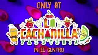 Paleteria La Cachanilla: Something AVACADO-EY!!!