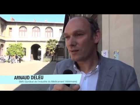 Find L'Amour Speed Dating in Prague December 2014 from YouTube · Duration:  2 minutes 28 seconds