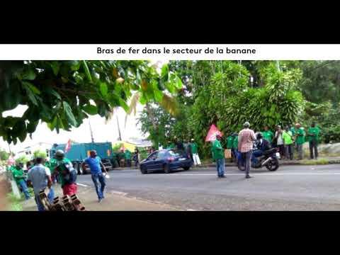 Bras de fer dans la banane en Guadeloupe