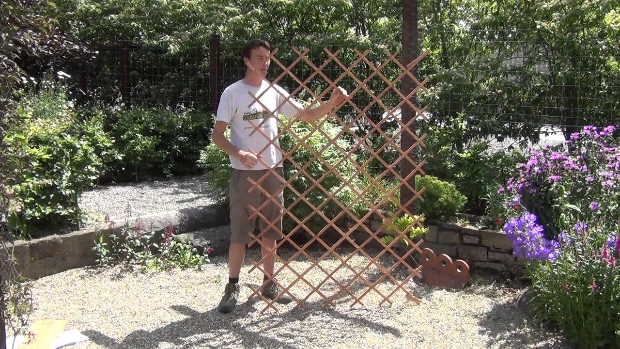 Large Expanding Timber Garden Trellis