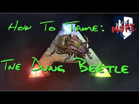 ARK: How to Tame a Dung Beetle (Your Own Fertilizer Producer!)