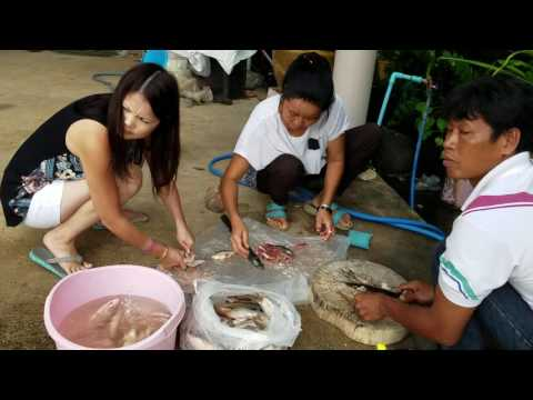 Iu mienh Eating fresh food Thailand fresh fish Sukhothai. Sukhothai Market.Mien.Bangkok food. Yao