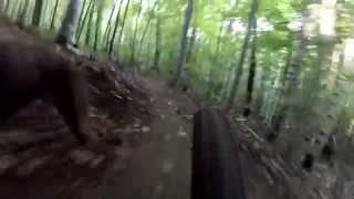 Mountain Bike In Victoriaville,qc With My Doberman