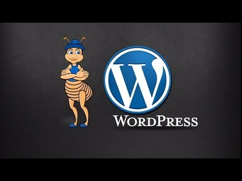 Best PSD to WordPress Conversion Services by XHTML Champs