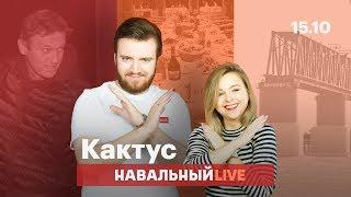 🌵 Навальный на свободе, искусство отдыхать и недостроенный мост