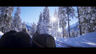 Mit der Pferdekutsche durch die Winterlandschaft in Wagrain-Kleinarl