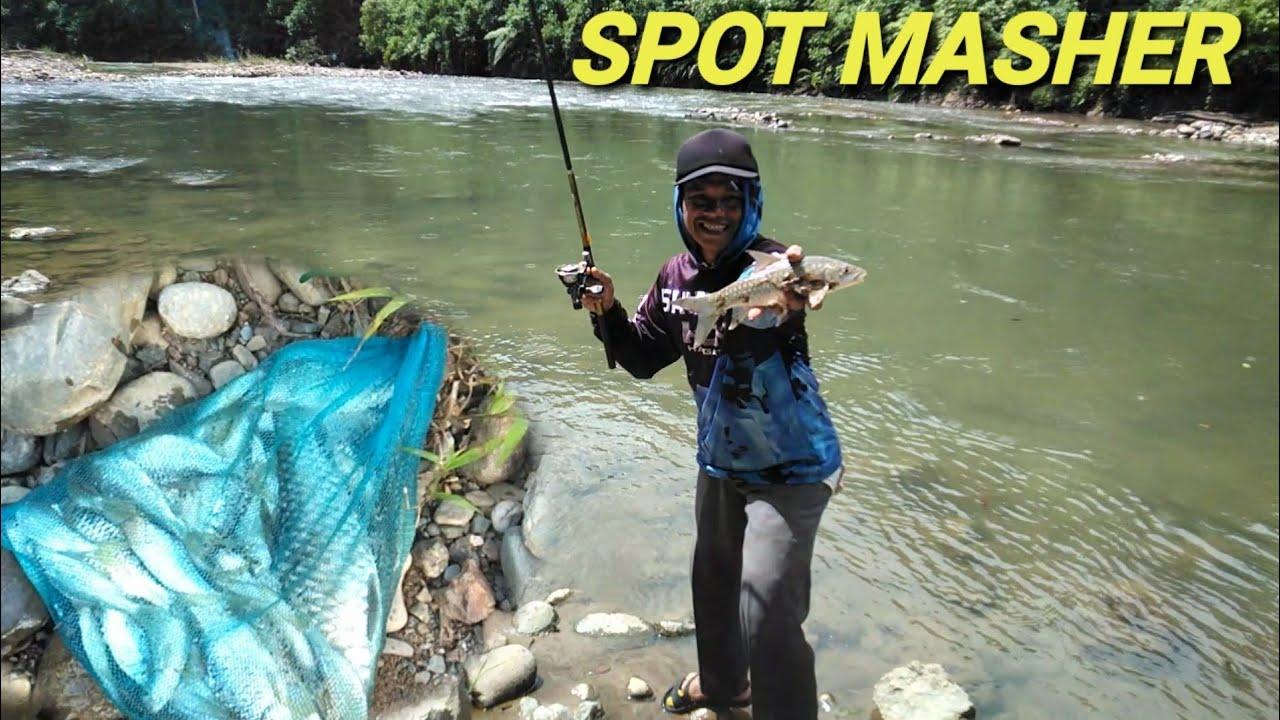 Mancing ikan maser di hutan liar di spot baru - YouTube
