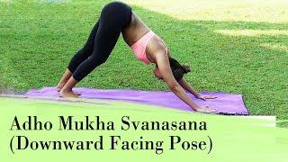 Yoga Asana - Adho Mukha Svanasana (Downward Facing Dog Pose) - Relieves Stress & Depression