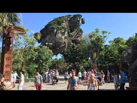 Animal Kingdom   Walt Disney World Vlog October 2018