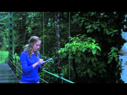 Student's video: Providence College - Global Health Semester Abroad Costa Rica