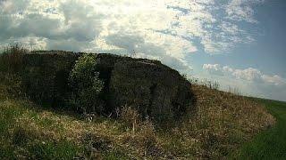 Поездка в Сычевский район (ДОТ, оленята, коп по войне)