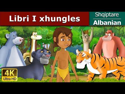 Libri I xhungles | Fëmijët Tregime | Perralla per femije shqip | 4K UHD | Albanian Fairy Tales