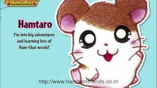 Hamtaro Opening Theme Song