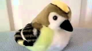 WILD REPUBLIC Мягкая игрушка со звуком 'Желтоголовый королек' в IqToy(, 2014-07-06T17:38:07.000Z)