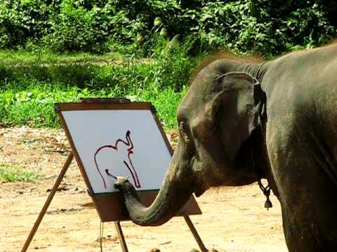 Thumbnail: Suda - The Painting Elephant