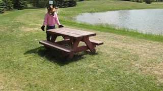 A Fox And A Picnic Table!and More!yes Its Vix!