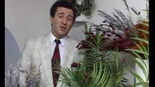 Самед Qəniyeva - ''в день Весілля'' (муз: Ельдар Мансуров)