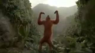 Funny Monkey Dance In Yo Yo Honey Singh Song styl