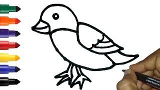 bird easy draw drawing step
