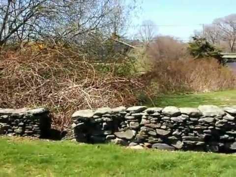 Prescott Farm - April 3, 2012