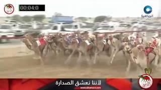 Gambar cover ثار صادق طويان المهري م الابيض 2016/7 بكار فطامين سياره