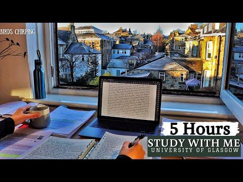5 HOUR STUDY